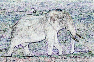 ELEPHANT SKETCH CAVE PAINTING