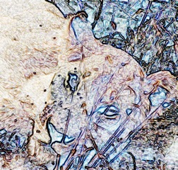 LION SKETCH CAVE PAINTING