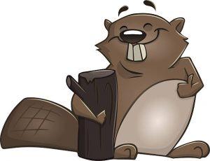 Karlheinz Beaver